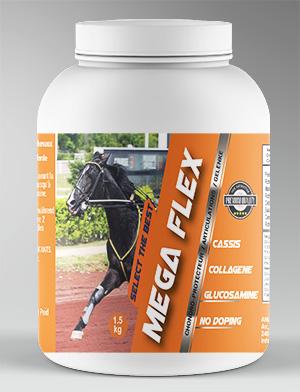 Mega-flex-300